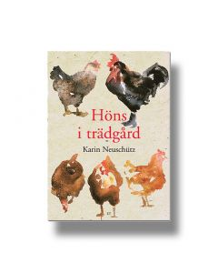 Bok Høns i Trädgård