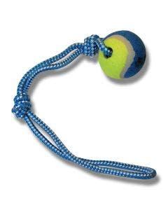 Hundeleke Tennisball m/tau