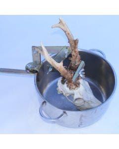 Hornholder Lotin Til koking av rådyrstrofé