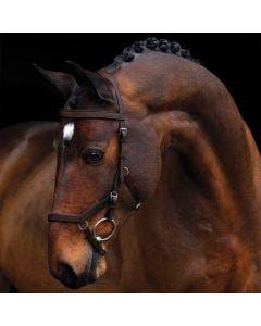 Hodelag Horseware Rambo Micklem Competition